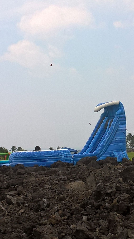 the blue crush water slide side view
